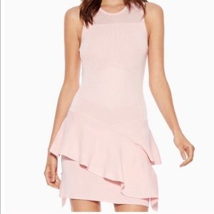 Parker Paulette Rosy Ruffle Sweater Dress Sz L